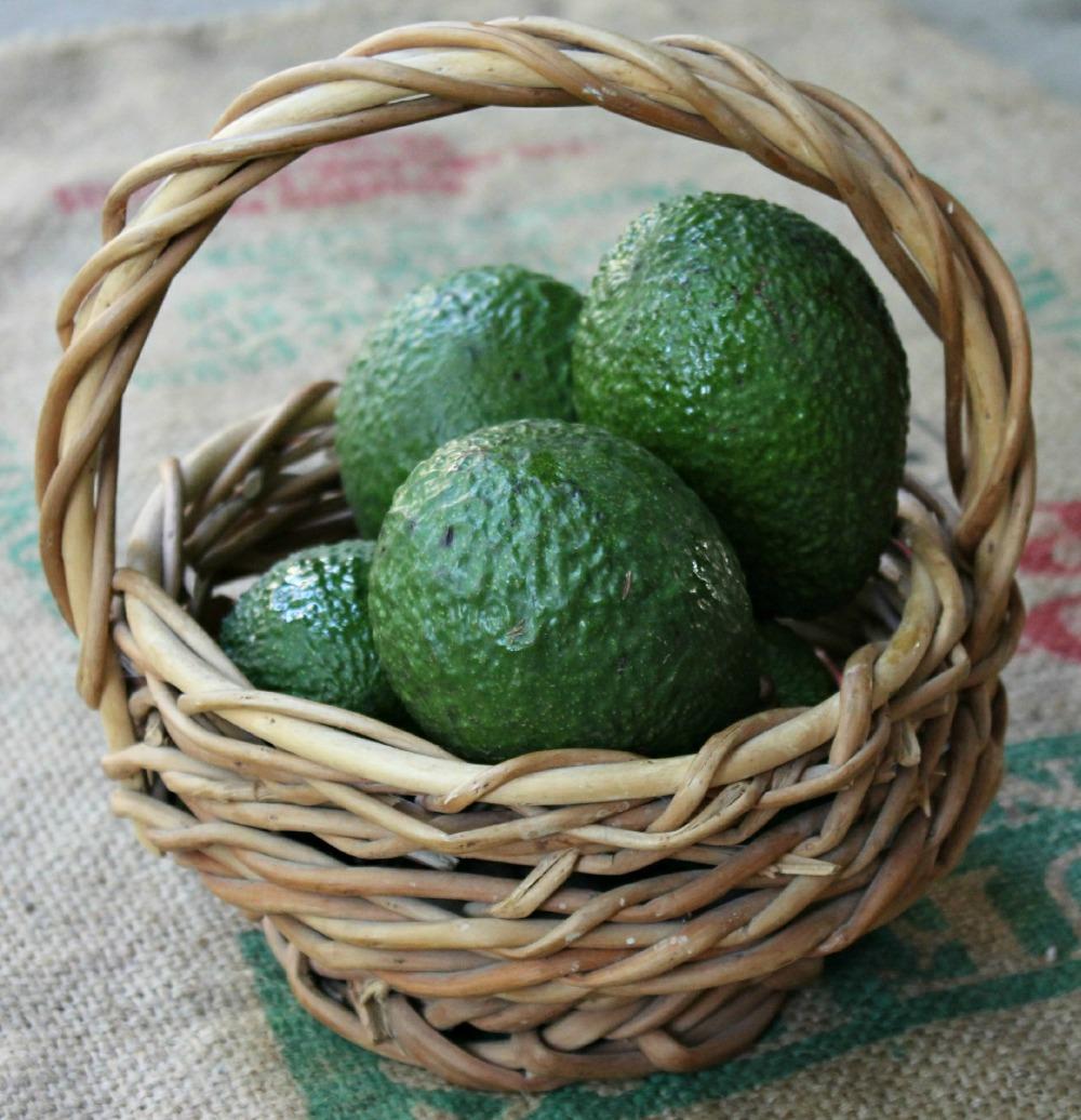 Tartare di avocado9