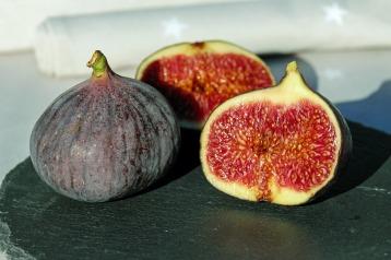 figs-1620664_1920