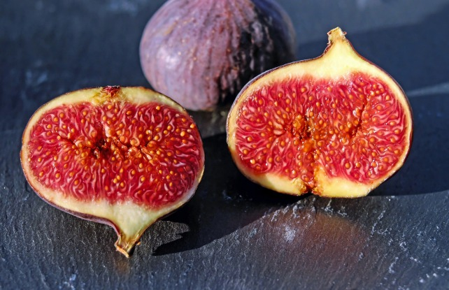 figs-1620590_1920
